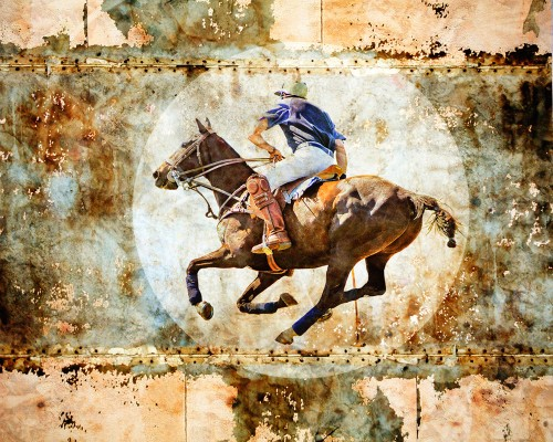 Polo chase by Judy Wood – Saskatoon Camera Club