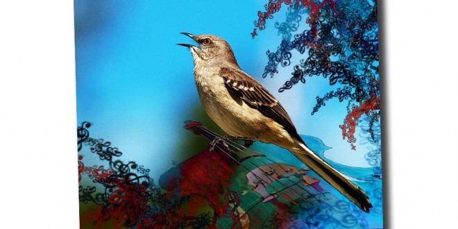 Mockingbird Lullaby