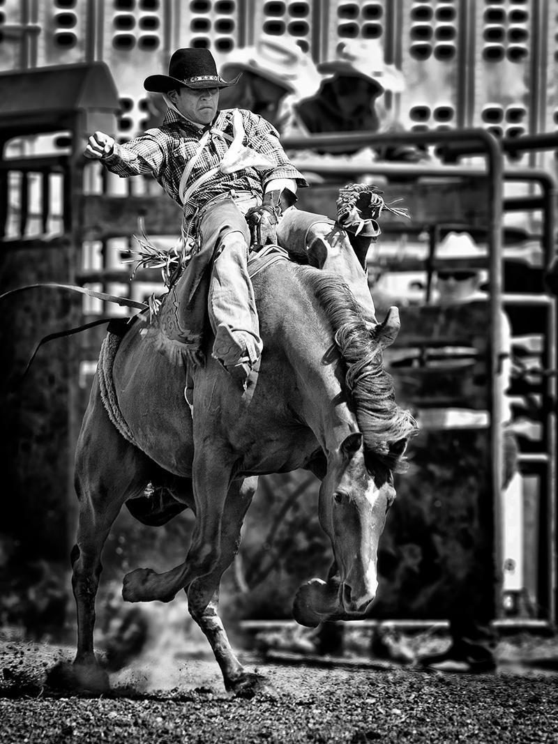 bw-blazing saddles-ken greenhorn