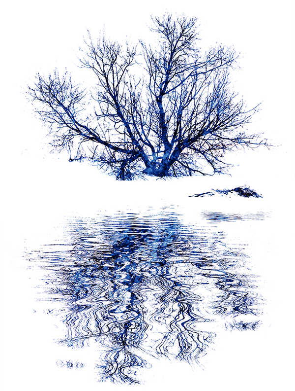 print-ar-winter blues-barry singer
